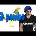 Apanhados – Xano – O pombo