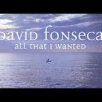 David Fonseca – All That I Wanted – Seasons: Falling – Letra