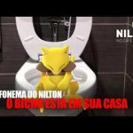 Nilton – Telefonema – O bicho está em sua casa – Pokemon Go – RFM