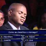 Quem Quer Ser Milionário – Angola – O que é um morcego – É uma ave