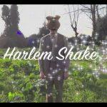 Zé Laustíbia dança Harlem Shake